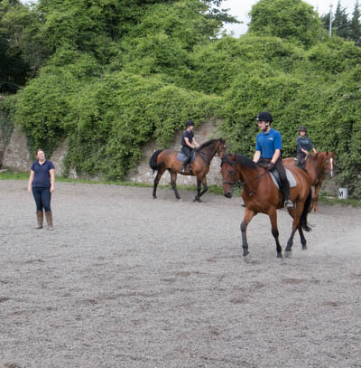 Lessons/Term Riding